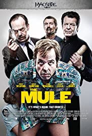 The Mule 1